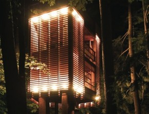 up and down lighting of slats in treehouse